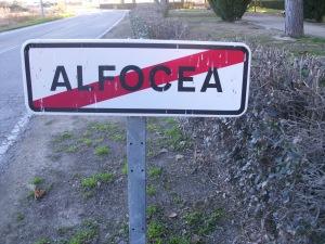 alfocea (26)